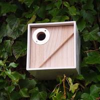 Urban Nest Box - fågelholk, Urban fågelhus för småfåglar