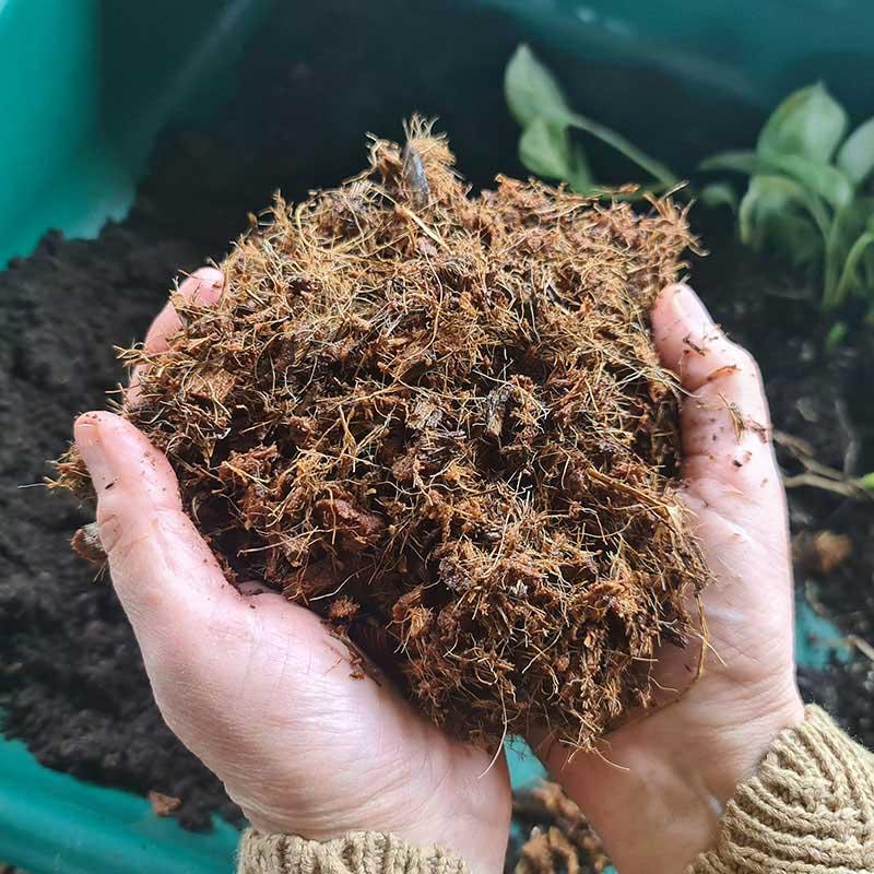 Kokosblock för plantering av växter