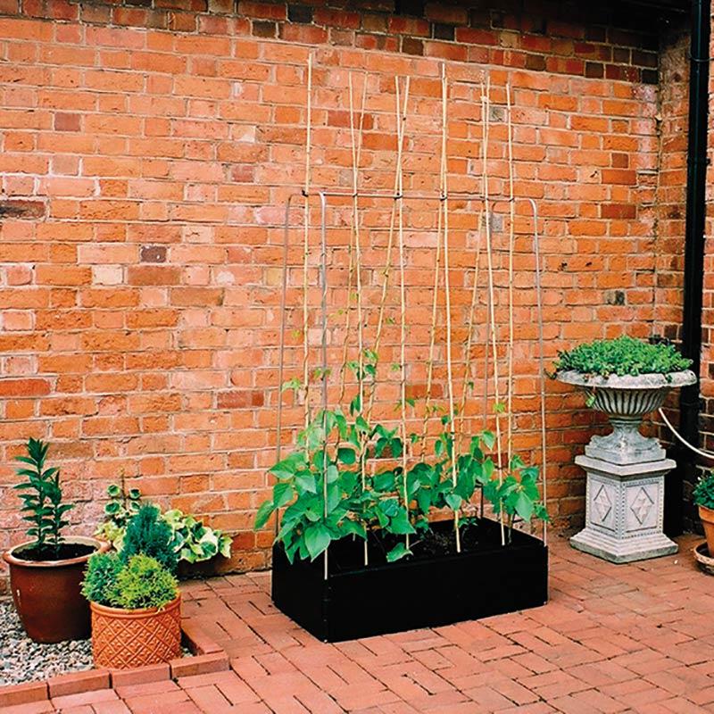 Mini Grow Bed med växtstödsram, Odlingslåda med växttödsram