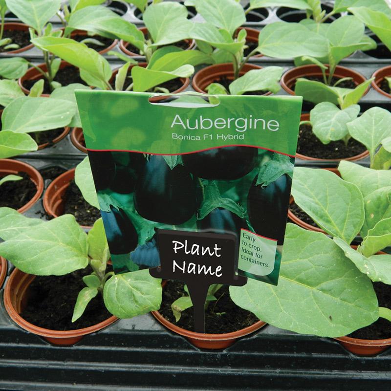 Plantetikett med hållare, svart