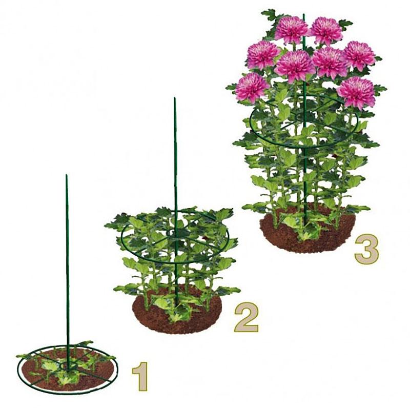 Växtstöd ring, 40 cm, 2-pack, Växtstödsring för perenner mfl