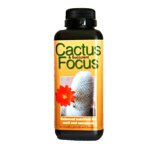 Kaktusnäring - Cactus Focus, 5...-Cactus Focus 500ml specialnäring för jordgubbar i kruka