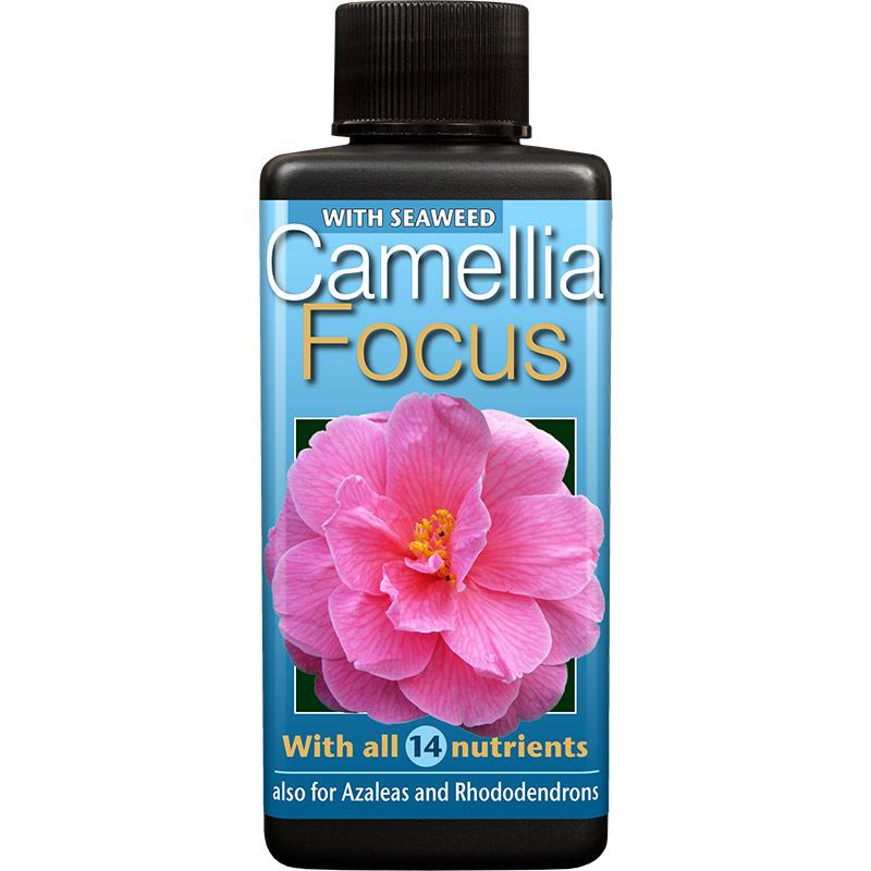 Kamelianäring - Camellia Focus, 100 ml , Näring för kamelia, azalea och andra surjordsväxter