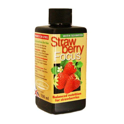 Strawberry Focus, 100ml, Strawberry Focus 100ml specialnäring för jordgubbar i kruka