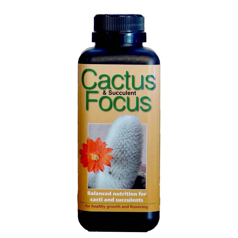 Cactus Focus 500ml specialnäring för jordgubbar i kruka