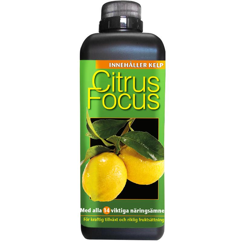 Citrusnäring - Citrus Focus, 1 Liter, Specialnäring för citrusväxter
