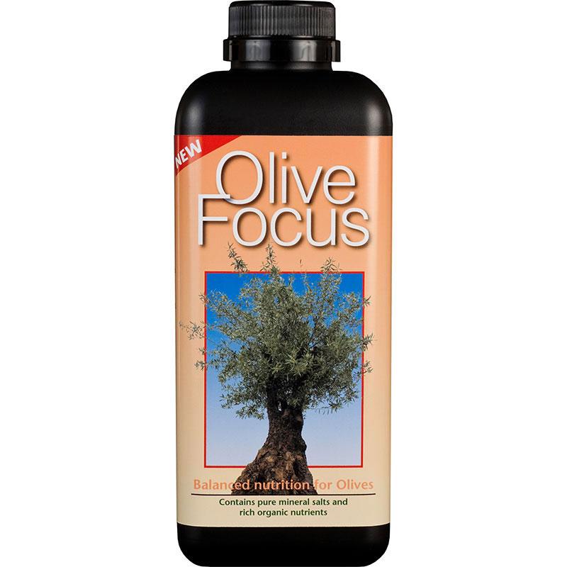 Olivnäring - Olive Focus, 1L, Olivnäring - gödning för olivträd i kruka