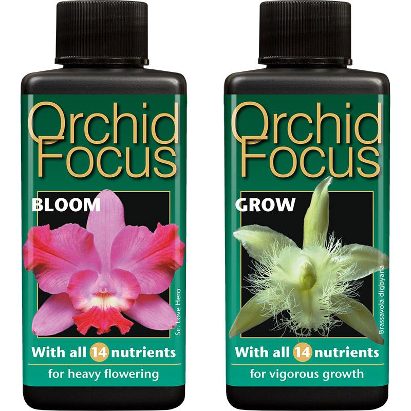 Näring för orkideer utvecklad av proffs