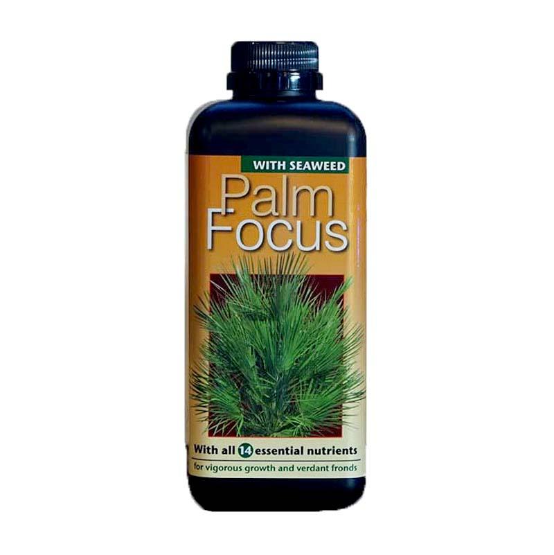 Palmnäring - Palm Focus, 1L, Palmnäring för palmer i kruka