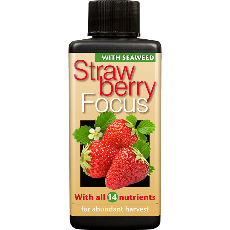 Strawberry Focus, 100ml, Strawberry Focus 100ml specialnäring för jordgubbar i kruka