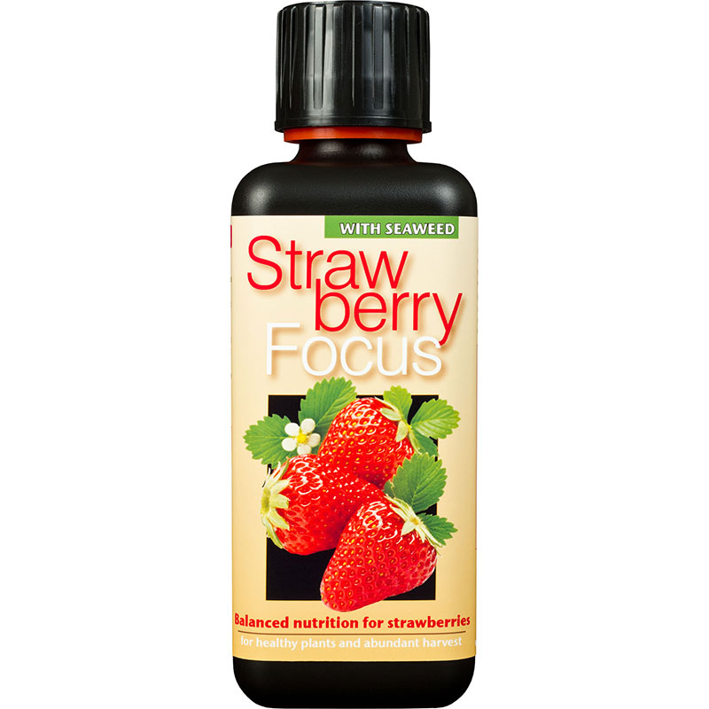 Strawberry Focus, 300ml-Strawberry Focus 300ml specialnäring för jordgubbar i kruka