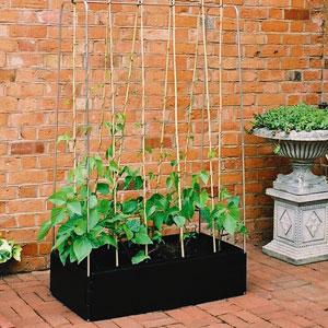 Mini Grow Bed med växtstöd,