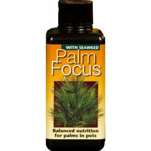 Palmnäring - Palm Focus, 100ml, Specialnäring för palmer, palmväxter