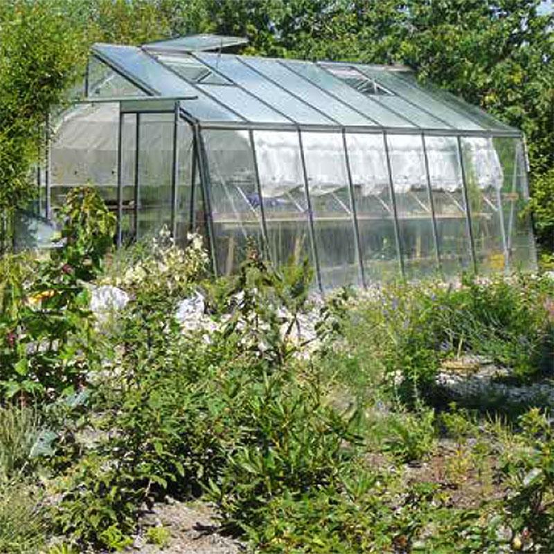 Glasväxthus Modell Action Prestige
