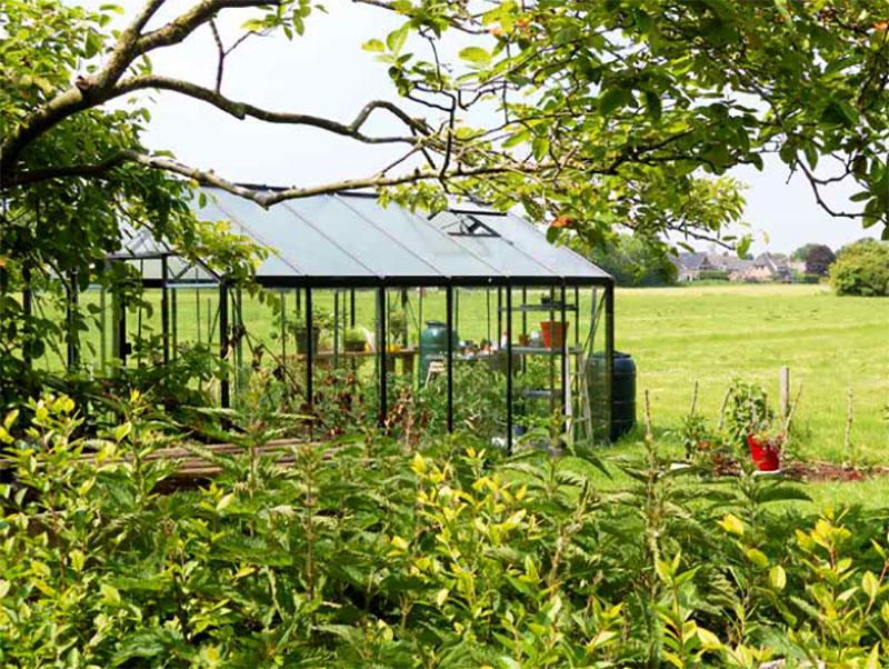 Växthus placerat i trädgården
