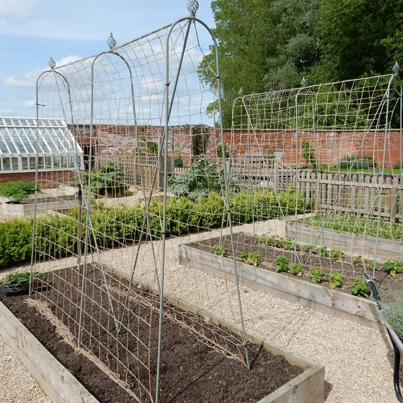 Elegance växtstöd, Runner Bean Frame, Stöd för köksträdgårdens klätterväxter