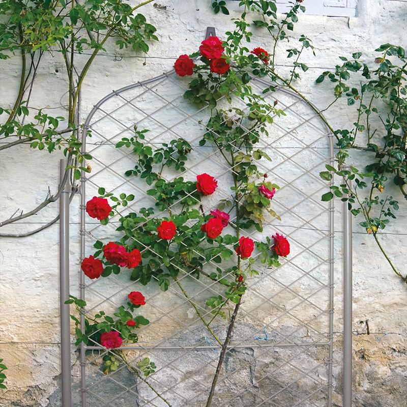 Trädgårdsskärm, Elegance Gothic-Trädgårdsskärm i smide Elegance Gothic