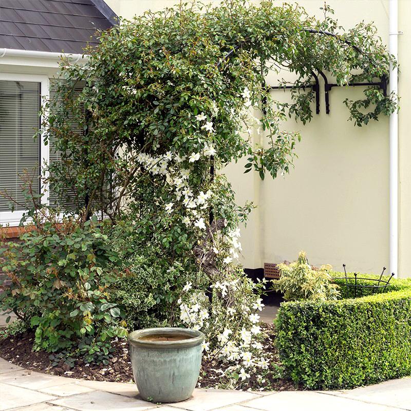 Växtportal för vägg, 120-Växtportal i smide för väggmontering 120 cm bred