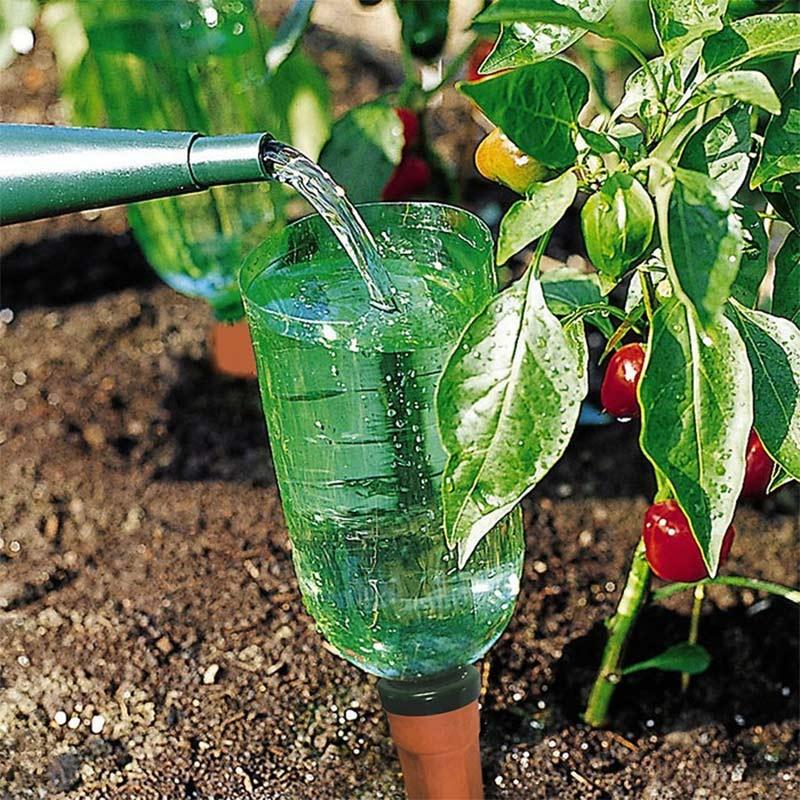 Långtidsbevattning i kökslandet