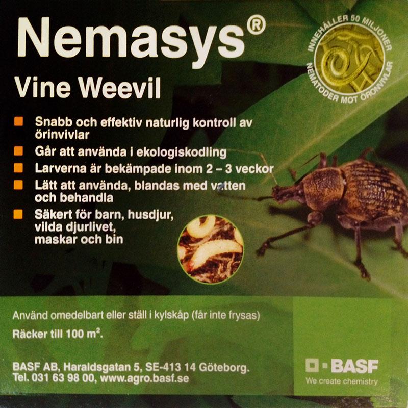 Nemasys L mot öronvivelns larver, 100 kvm