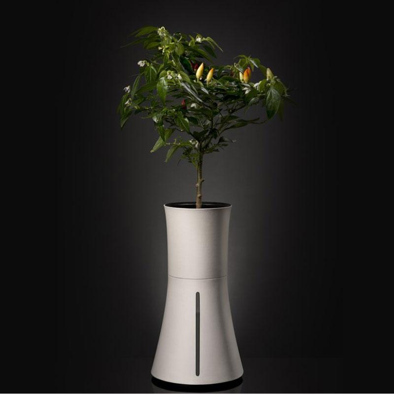 Botanium, smokey white