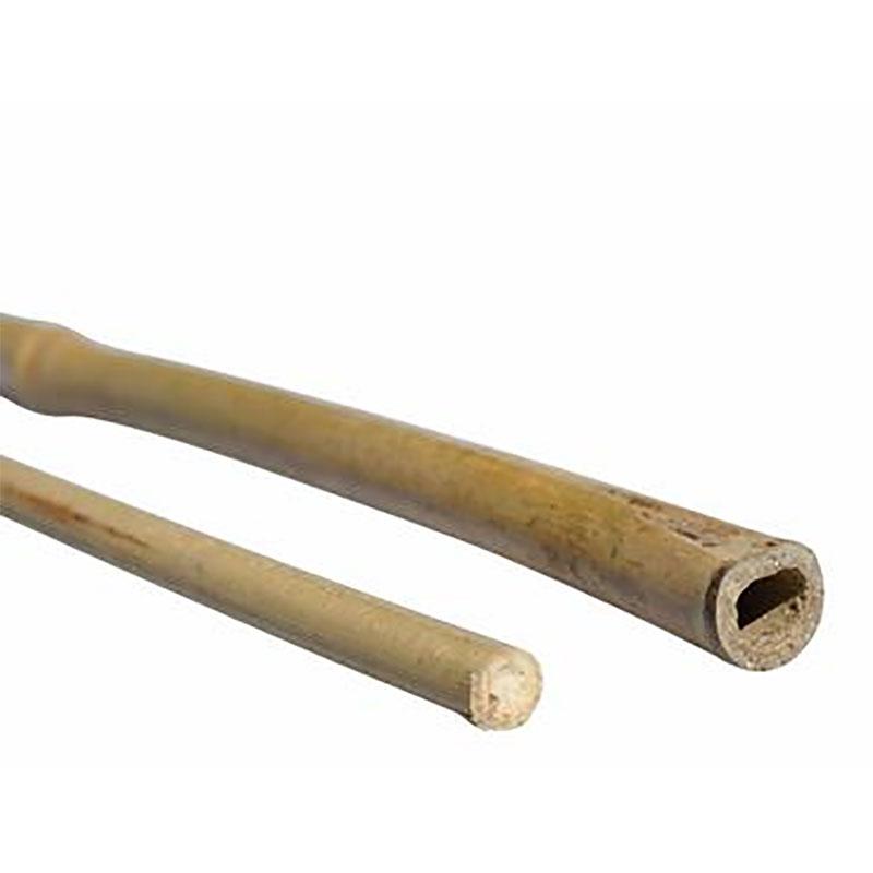 Bambukäpp för uppbindning och stöd
