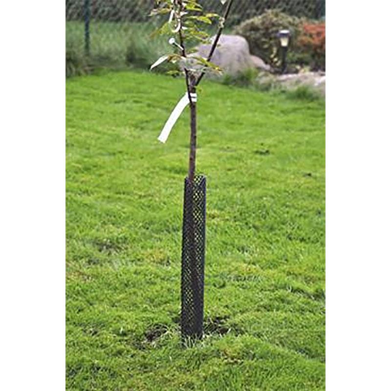 Gnagskydd 60 cm, Stamskydd - skydd mot gnagare