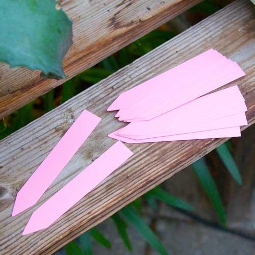 Växtetiketter, rosa