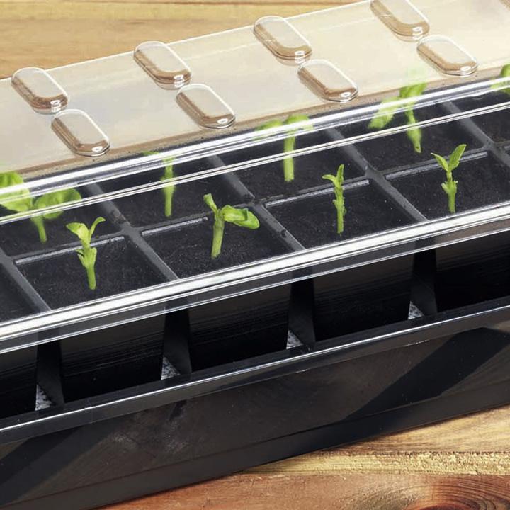 Miniväxthus med bevattning - 1...-Självvattnande bricka för fönsterbrädan
