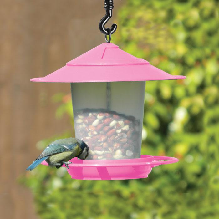 Fågelbord i rosa-fågelbord för nötter och fröblandningar