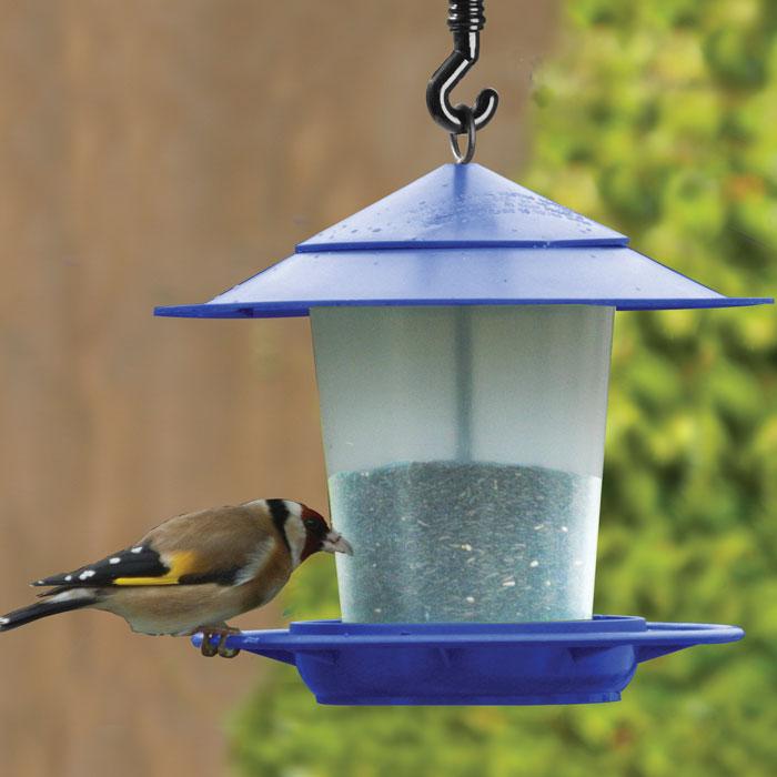 Fågelbord i blått-fågelbord för nötter och fröblandningar