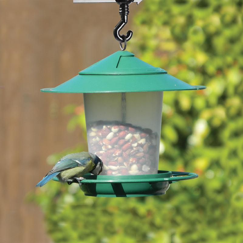 fågelbord för nötter och fröblandningar
