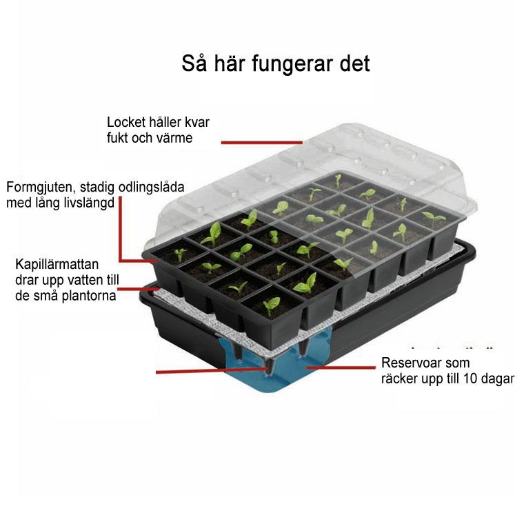 odlingsväxthus mini för frösådd med bevattning