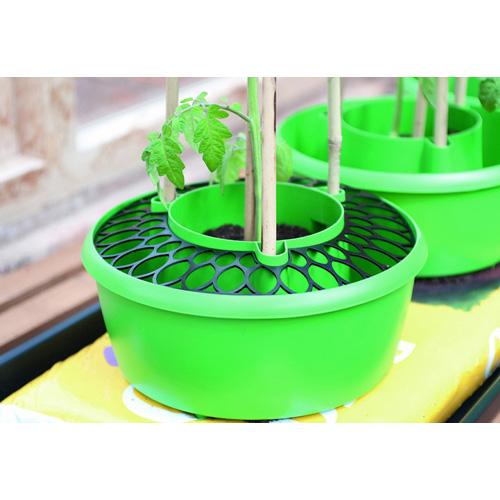 Skyddsnät för plantkrage 3-pack, Skydd till plantkrage för odling i säck