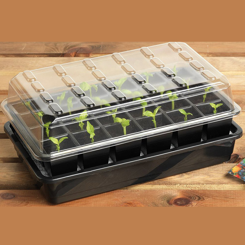 Seed Success miniväxthus med bevattning, 24 celler-Miniväxthus med 24 celler och underbevattning