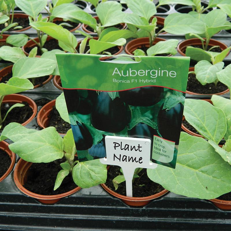 Plantetiketter med hållare, vit