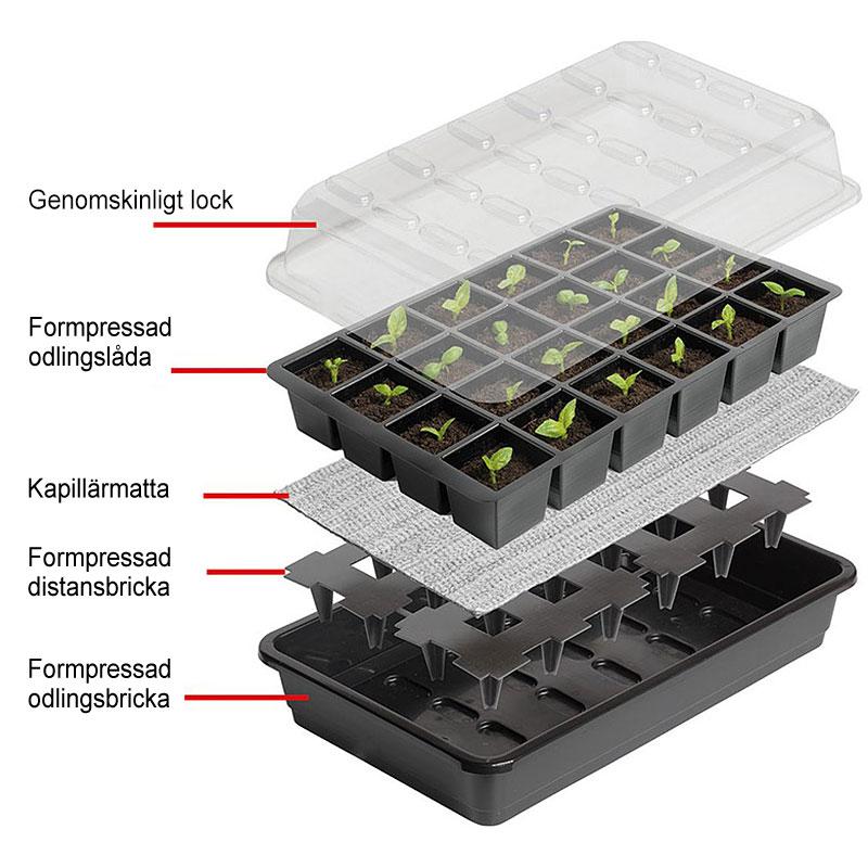 Miniväxthus med celler för underbevattning