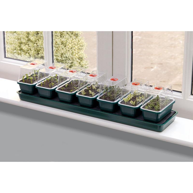 Miniväxthus Super 7 med bevattning och 7 separata miniväxthus