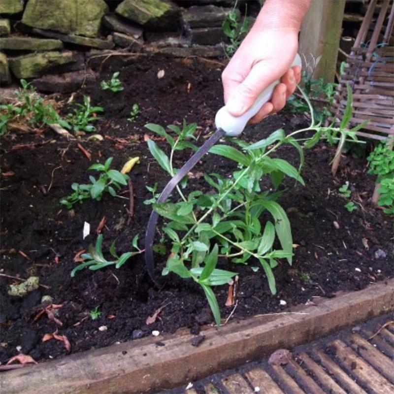Cultimate - ogräsrensare, Rensverktyg för ogräs i rabatten, cultimate