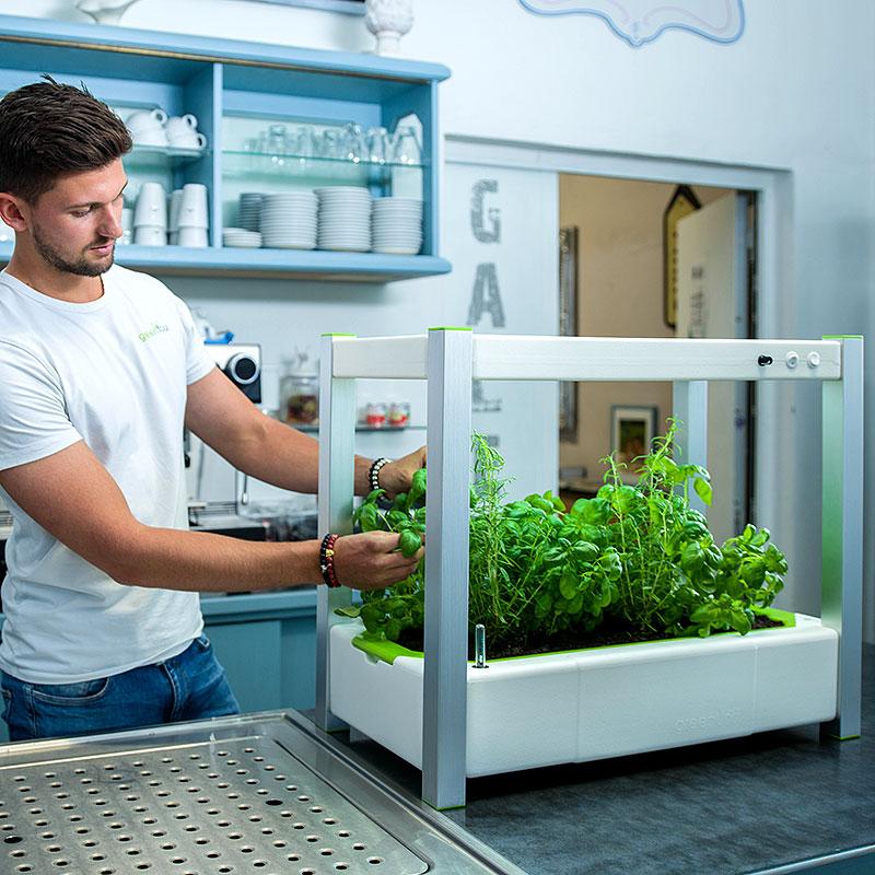 Inomhusodling i köket med odlingssation GreenUnit