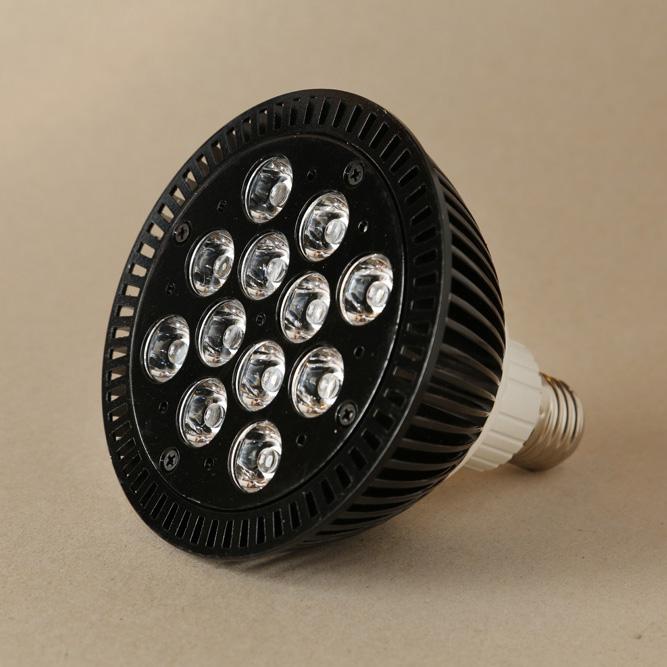 LED - Black Beauty 20W, rött/blått 660/460nm, LED-lampa för växter