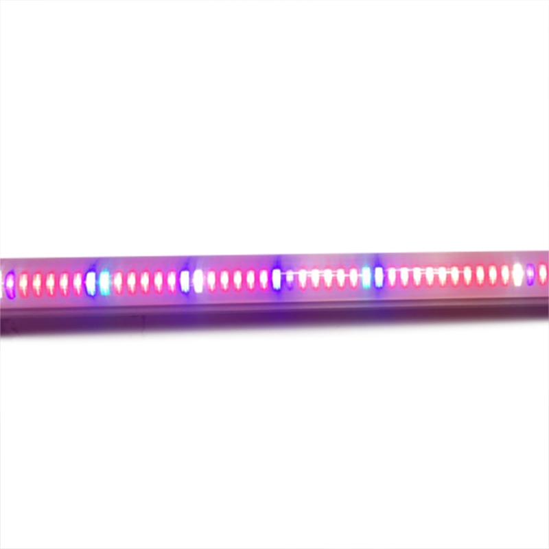 LED växtlysrör