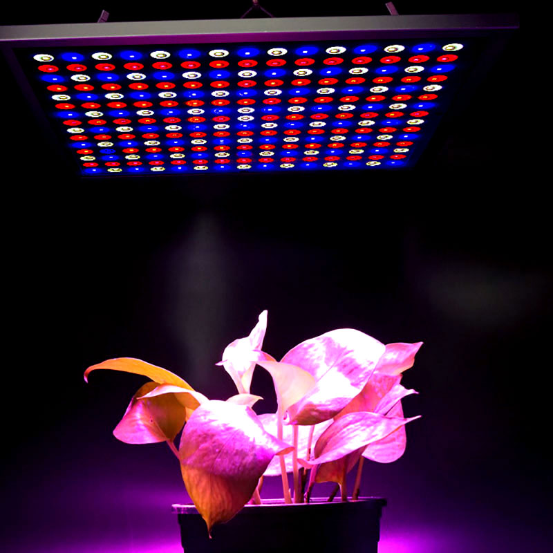 Växtlampa X-Grow LED-panel 45 watt