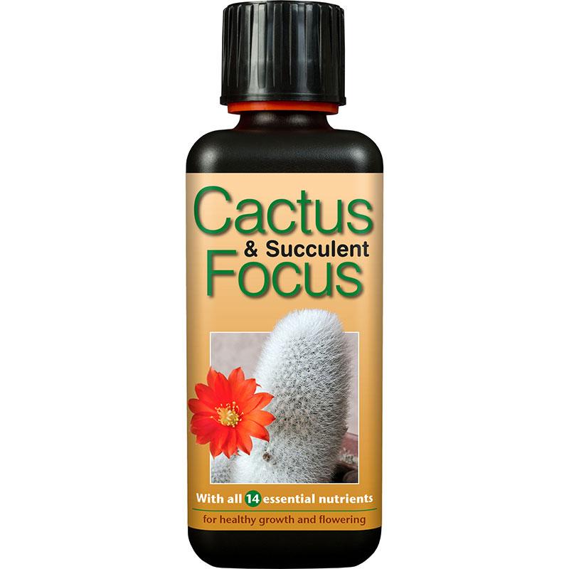 Cactus Focus specialnäring för kaktusar och succulenter
