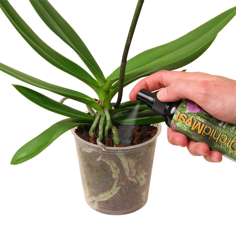 Krukväxtnäring - Houseplant Myst 750 ml, Krukväxtnäring spraya direkt på bladen