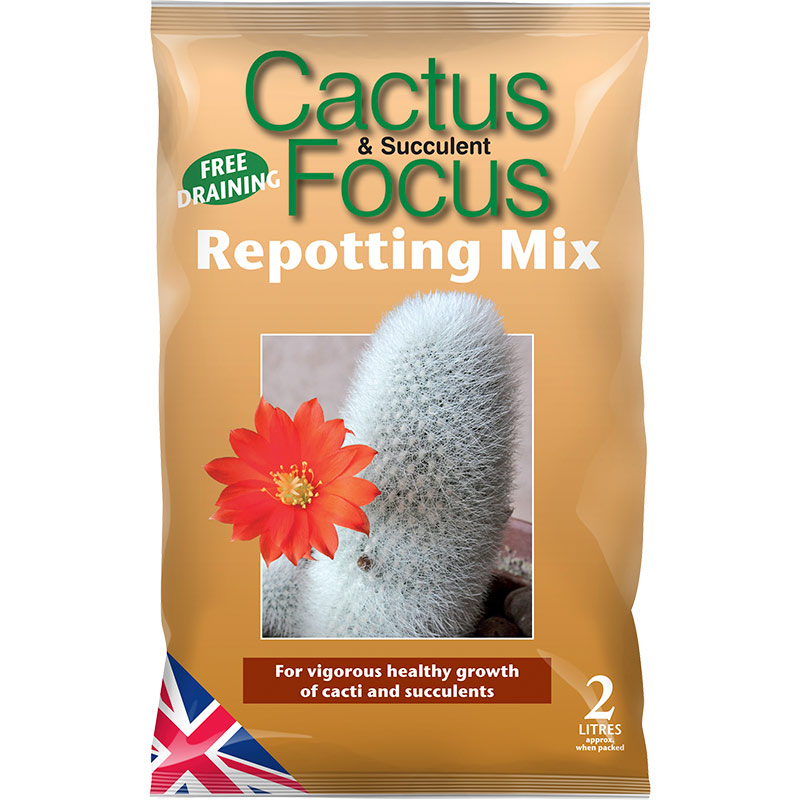Cactus and Succulent Focus Repotting Mix - kaktusjord