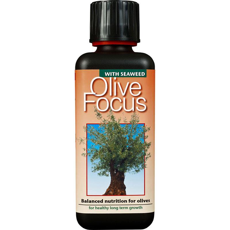 Olivnäring - gödning för oliver