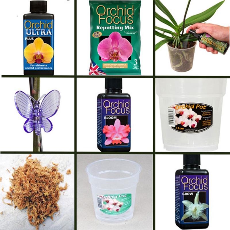 Speciapaket för orkideskötsel