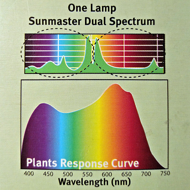 Sunmaster Duel Spektrum 600w,