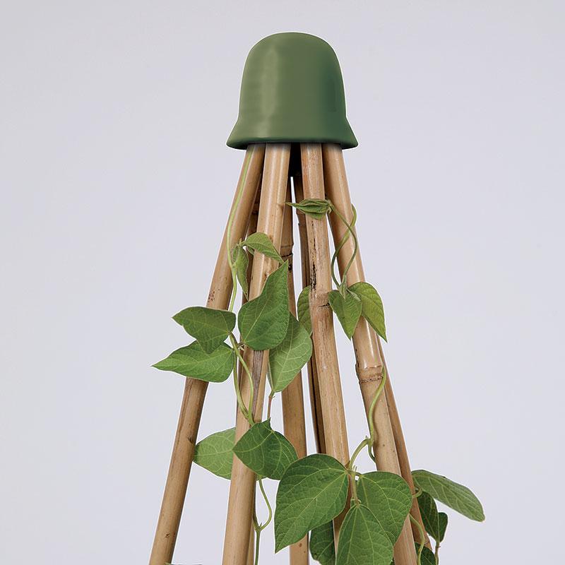 Växtstöd, 8 CaneTopper, olive, CaneTopper 8-växtstöd för blomkäppar, olivgrönt